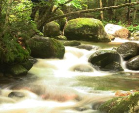 a_study_in_flowing_water_xiii_by_christhejeweler-d4la86a
